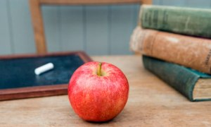 teachers-apple