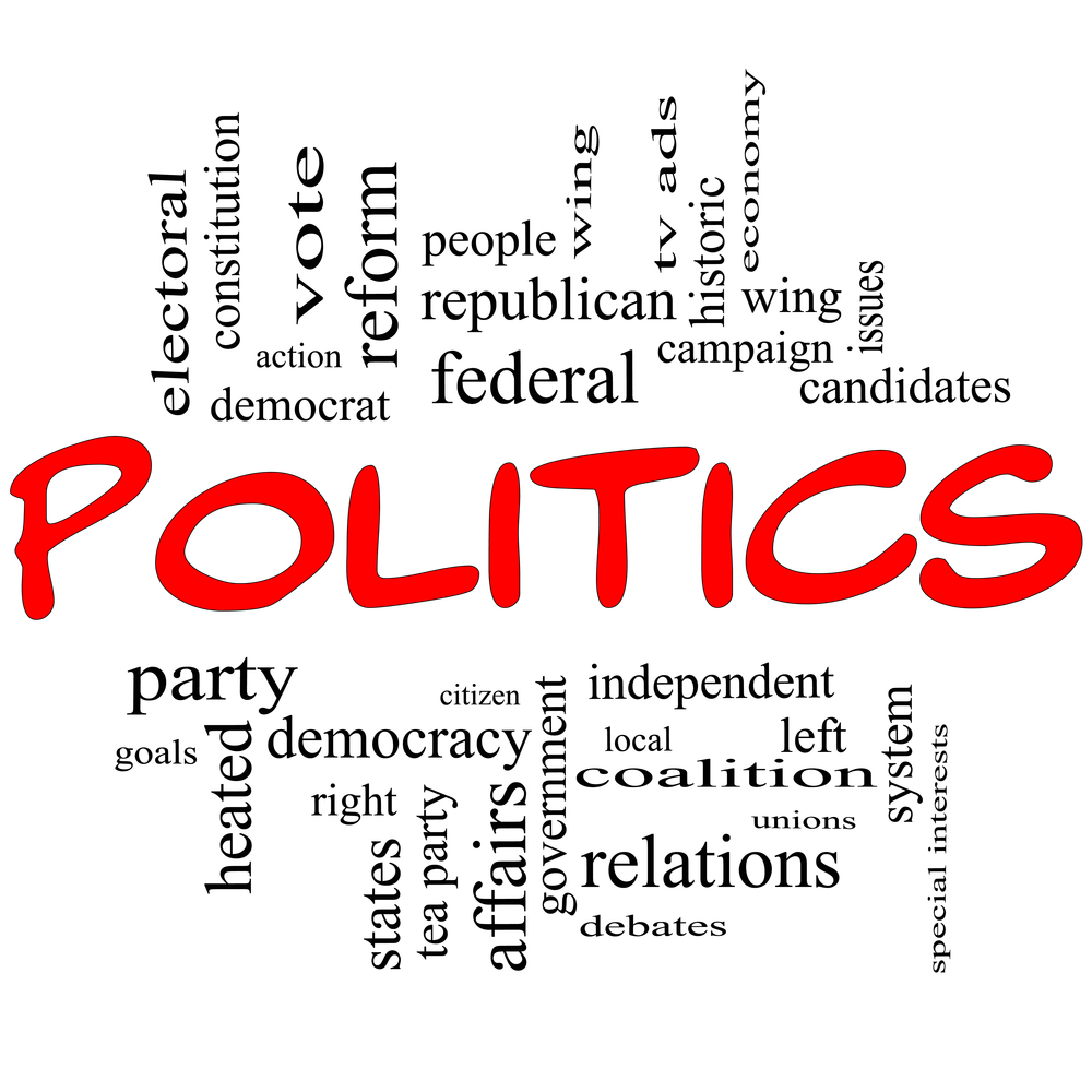 essay on the political scene in