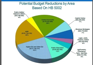 Potential State Budget Reductions