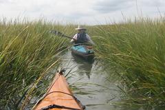 Photo: Environment Virginia