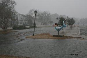 Norfolk, VA Photo: Wetlands Watch