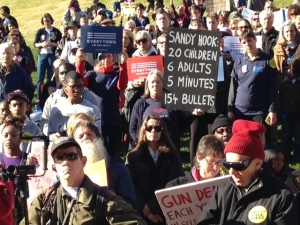 Gun Rallies Photo Jan 2015