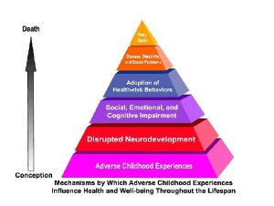 The Effects of Adverse Childhood Experiences