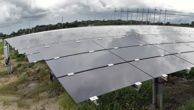 Climate Company Impact