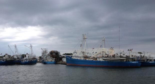 omega_ships