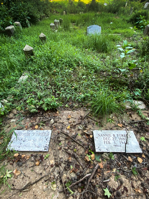 Joshua and Nannie Forbes plot edited